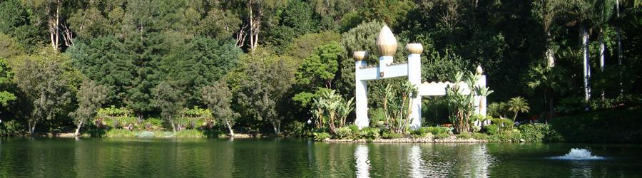 Self Realization Fellowship
